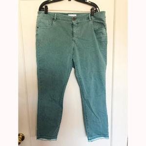 Loft Plus Green Wash Mid Waist Jeans with Raw Hem